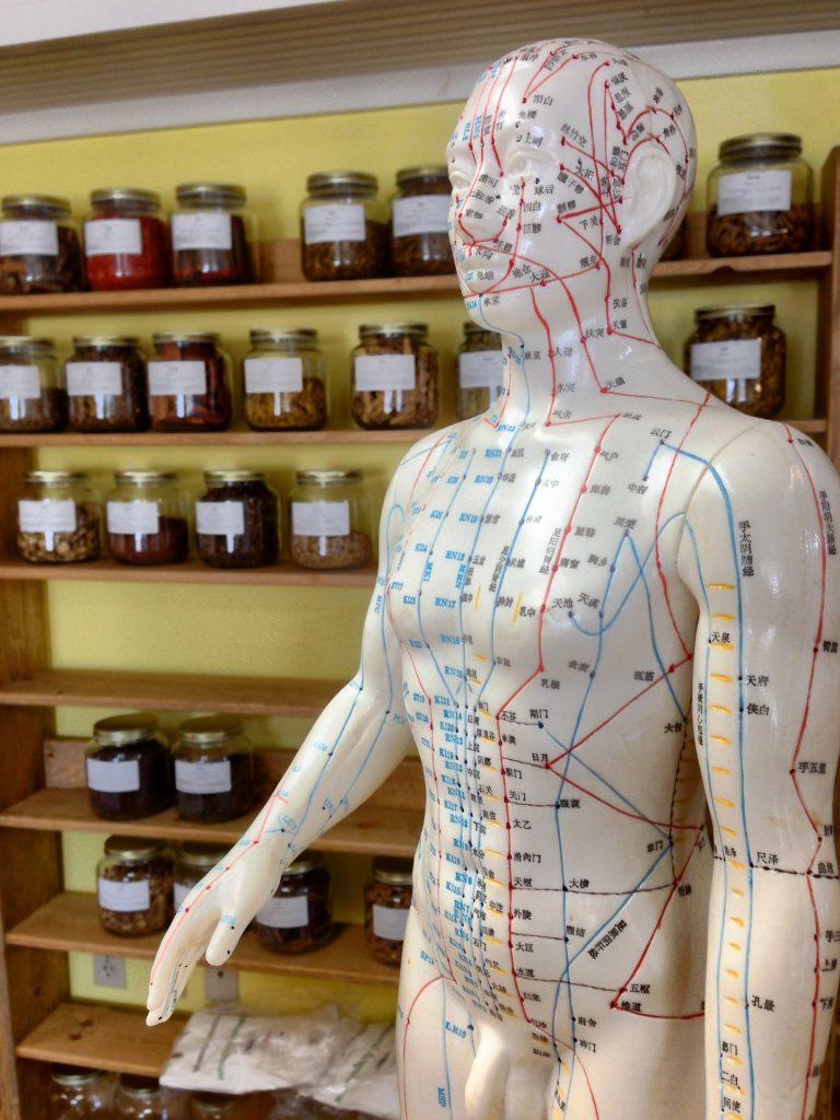 acupuntura integral