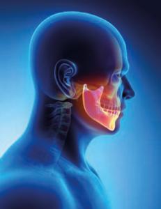 mandibula integral