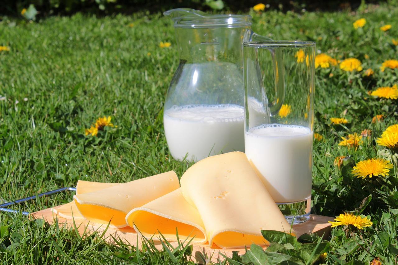 alergia lácteos y consecuencias