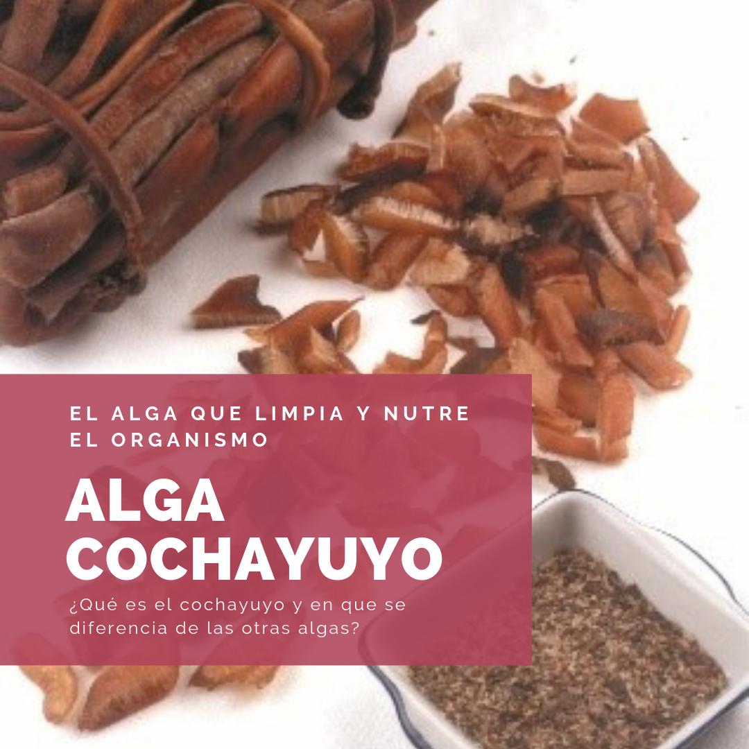 ALGA COCHAYUYO