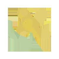 INTEGRAL-icono-2
