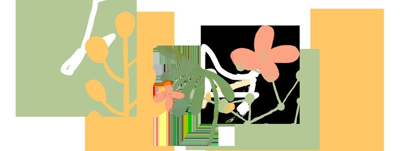 INTEGRAL-plantas-3